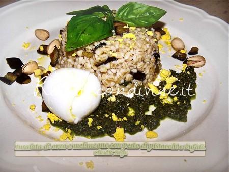 Insalata-di-orzo-e-melanzane-con-pesto-di-pistacchi-e-bufala-di-Claudio-Rega-450x337